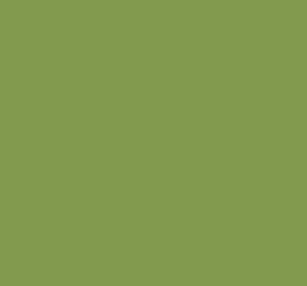 Feltro Verde Abacate Santa Fé